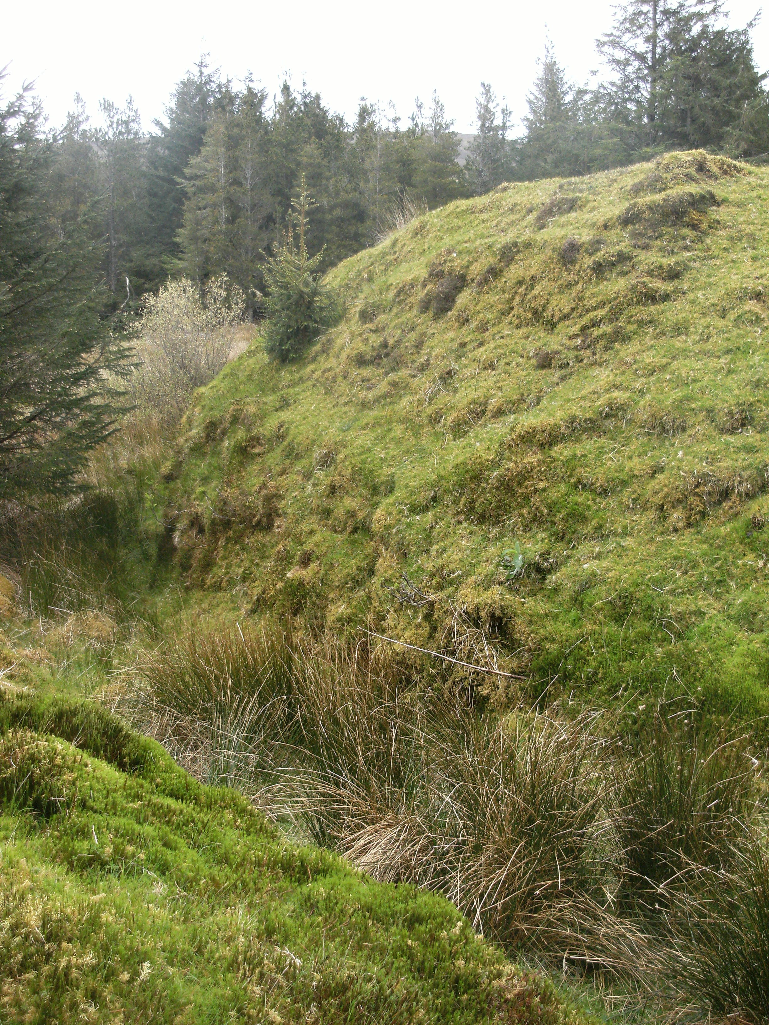 Ringfort in Mayo - Lios na Gaoithe near Newport