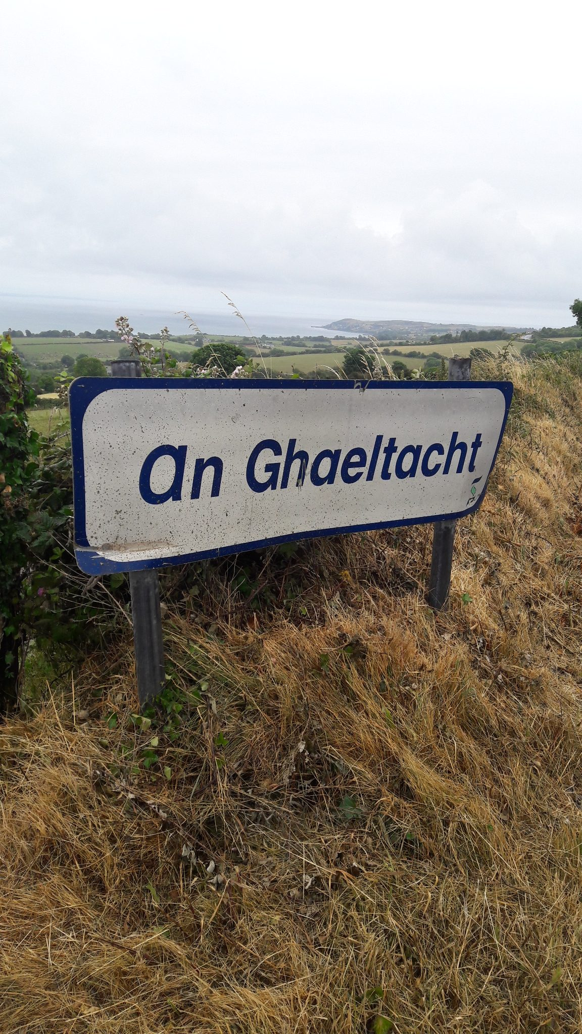 Gaelscoil - Irish Language school in Ireland