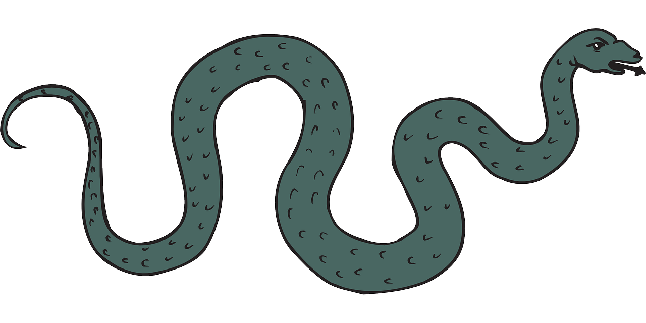 The Mórrígan's Children Meche Snake Serpent